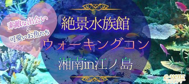 江ノ島水族館の幻想的な空間を楽しめる!ウォーキングコン! 【神奈川県】