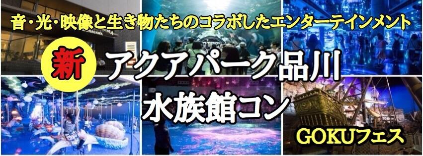 【品川のプチ街コン】GOKUフェスジャパン主催 2017年12月20日