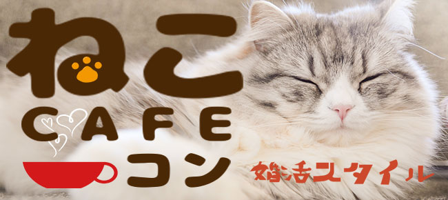 癒しねこCafeコン!(趣味活)
