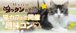 【関内・桜木町・みなとみらいの恋活パーティー】株式会社フジフィールド主催 2017年12月16日