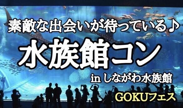 【東京都品川の趣味コン】GOKUフェス主催 2017年12月15日