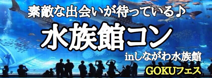 【東京都品川の趣味コン】GOKUフェス主催 2017年12月21日