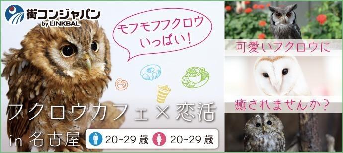 【愛知県栄の趣味コン】街コンジャパン主催 2018年1月5日