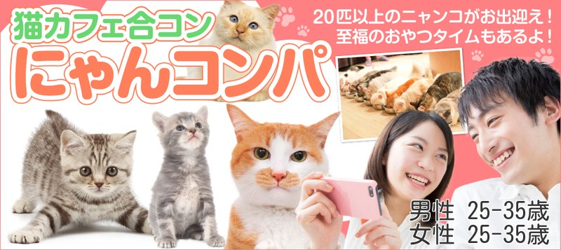 【男女とも25~35歳】20匹以上の猫スタッフがお出迎えするニャン♪~猫カフェ合コン☆にゃんコンパ~