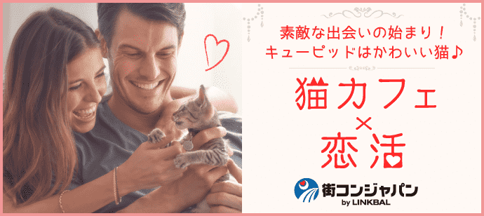 きまぐれにゃんこがキューピット♪♪第40回恋活パーティー~猫カフェMoCHA心斎橋店~【趣味コン・趣味活】