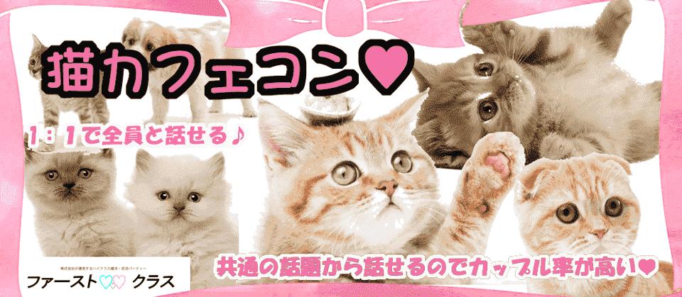 【仙台のプチ街コン】ファーストクラスパーティー主催 2018年2月25日