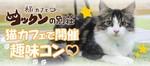 【関内・桜木町・みなとみらいの恋活パーティー】株式会社フジフィールド主催 2018年2月17日