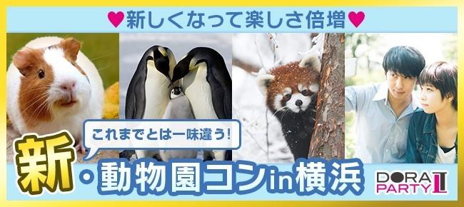 2/12(祝)野毛山☆20~34歳限定!可愛い生き物に囲まれながら出会える動物園デート