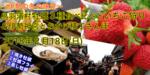 【梅田のプチ街コン】恋旅企画主催 2018年2月18日