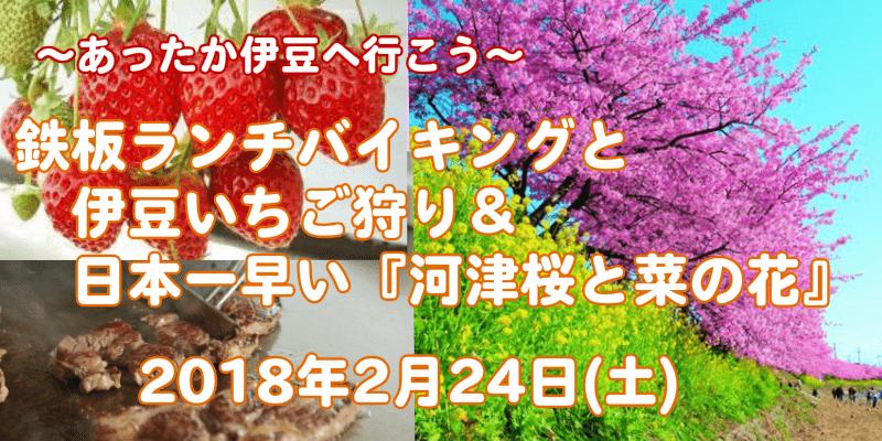東京発!鉄板ランチバイキングと伊豆いちご狩り&日本一早い『河津桜と菜の花』♪【婚活バスツアー】