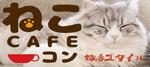 【恵比寿のプチ街コン】株式会社スタイルリンク主催 2018年3月18日