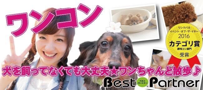 【東京】4/8(日)亀有ワンコン@趣味コン/趣味活★犬を飼ってなくても大丈夫★《22~32歳限定》