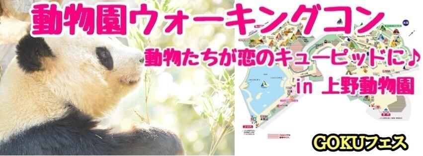 【東京】2/21(水)10:00~ 動物園ウォーキングコンin 上野動物園!!1人参加大歓迎☆★動物たちが恋のキューピッドに(^_-)-☆