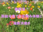 【丸の内の婚活パーティー・お見合いパーティー】TKK TRAVEL主催 2018年3月10日