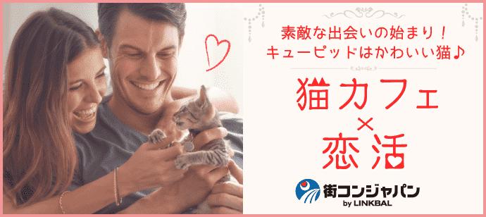 きまぐれにゃんこがキューピット♪♪第42回恋活パーティー~猫カフェMoCHA心斎橋店~【趣味コン・趣味活】