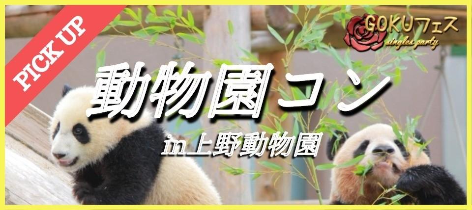 【東京】3/23(金) ★パンダで話題沸騰中★動物園ウォーキングコンin 上野動物園!!1人参加大歓迎☆★動物たちが恋のキューピッドに(^_-)-☆