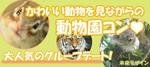 【名古屋市内その他の恋活パーティー】未来デザイン主催 2018年3月31日