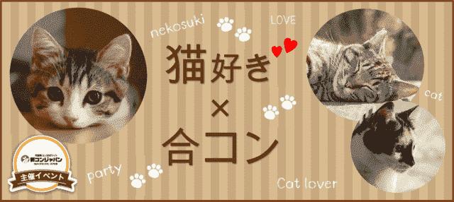 猫好き集まれ☆合コンin梅田☆4月26日(木)