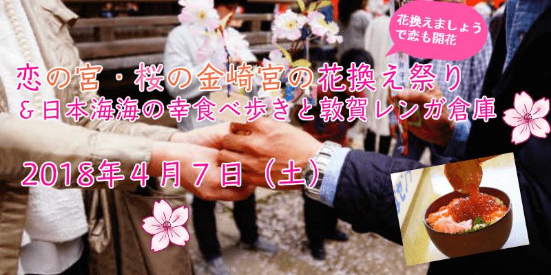 名古屋発!海の幸はしごめしと敦賀赤レンガ倉庫&恋の宮・桜の金崎宮の花換え祭り【婚活バスツアー】