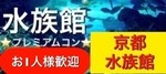 【京都駅周辺の体験コン】街コンアウトドア主催 2018年4月28日