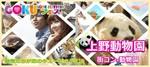 【上野の体験コン】GOKUフェス主催 2018年4月27日