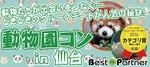 【仙台の体験コン】ベストパートナー主催 2018年5月4日