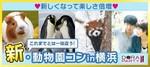 【関内・桜木町・みなとみらいの恋活パーティー】ドラドラ主催 2018年4月28日