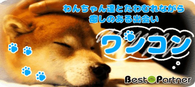 【大阪・難波】6/30(土)☆ワンコン@趣味コン☆アクセス抜群☆大人気の犬カフェを完全貸切☆可愛いワンちゃんたちが出会いをサポート☆