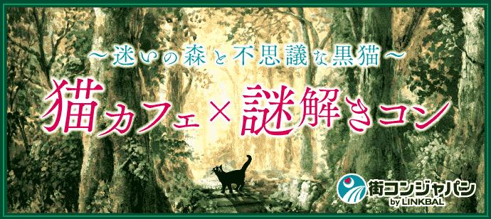 【男性募集中★】猫カフェ謎解きコン☆~迷いの森と不思議な黒猫~  【趣味コン・趣味活】