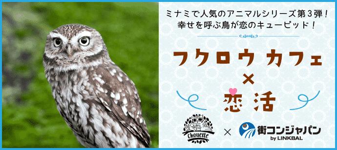 幸せをよぶ鳥がキューピット♪♪第1回恋活パーティー~ふくろうカフェ chouette~【趣味コン・趣味活】