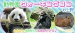 【上野の体験コン・アクティビティー】e-venz(イベンツ)主催 2018年5月26日