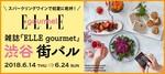 【東京都渋谷のバル・グルメイベント】街コンジャパン主催 2018年6月14日