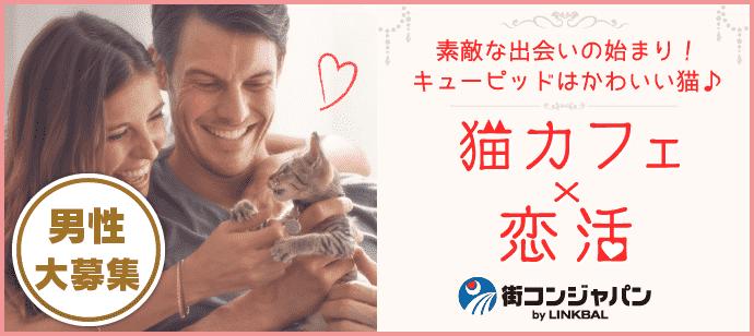 【お一人参加多数!】きまぐれにゃんこがキューピット♪♪第43回恋活パーティー~猫カフェMoCHA心斎橋店~【趣味コン・趣味活】
