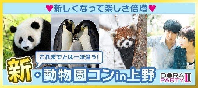 5/22(火)上野☆20〜32歳限定!話題のパンダちゃん!可愛い生き物に囲まれながら出会える動物園デート