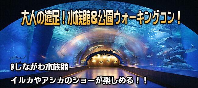 6月17日(日) 穴場スポット!しながわ水族館へ!大人の遠足!イルカやアシカのショーも楽しめる!水族館鑑賞&公園ウォーキングコン!(趣味活)