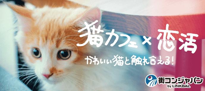 【お一人参加多数!】ネコカフェ恋活パーティー~猫カフェMoCHA心斎橋店~【趣味コン・趣味活】