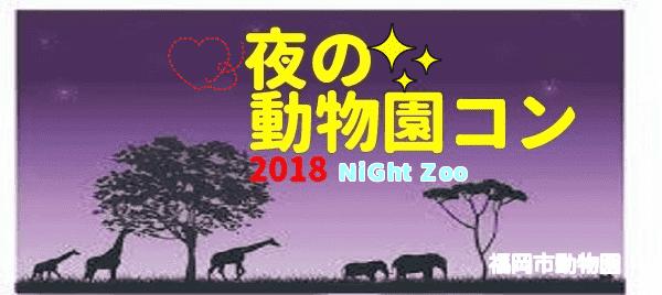 第1回 福岡市動物園(夜の動物園)