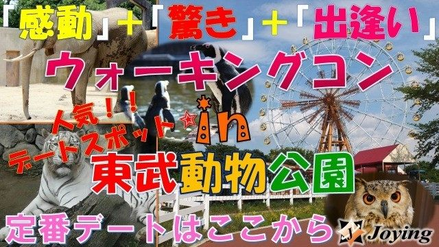 【宮代町】『東武動物公園ウォーキングデートコン♡』≪30代~40代編♪≫
