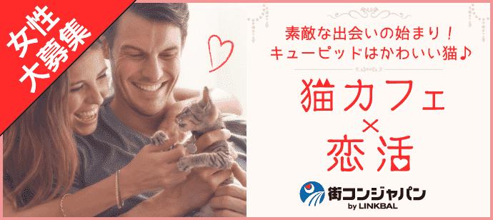 きまぐれにゃんこ♡がキューピット~猫カフェバロン~【趣味コン・趣味活】
