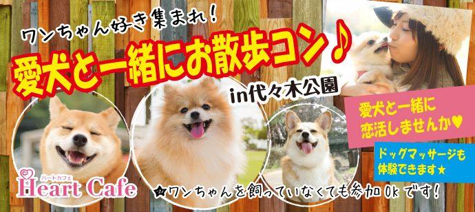 犬好き集まれ!愛犬と一緒に楽しめる♪ワンちゃん用メディカルアロマ作成体験コン【代々木公園】