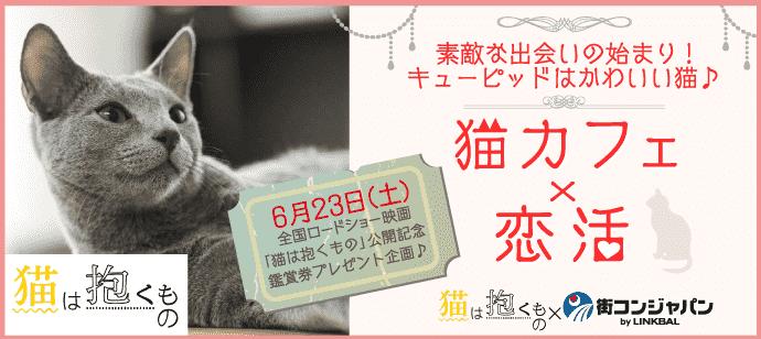 きまぐれにゃんこがキューピット♡~猫カフェバロン~【趣味コン・趣味活】