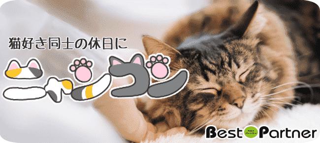 【愛知・名古屋】9/21(金)☆ニャンコン@趣味コン☆夏に嬉しい冷房完備の室内開催☆駅徒歩2分☆大人気の猫カフェを完全貸切☆可愛い猫ちゃん達が出会いをサポート☆カップリングタイムあり☆