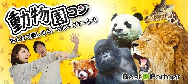 【東京】9/24(祝・月)動物園コン@趣味コン/趣味活 in 上野動物園☆気軽に参加できるグループデートが人気☆《40~48歳限定》