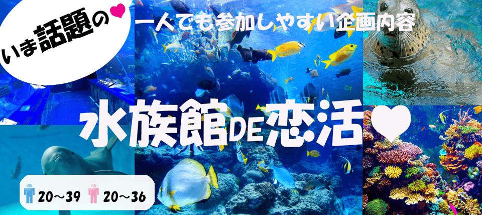 【八景島シーパラダイス☆】デートコン開催!恋する水族館デートでゆっくりとお互いのことがわかるデートコン★☆