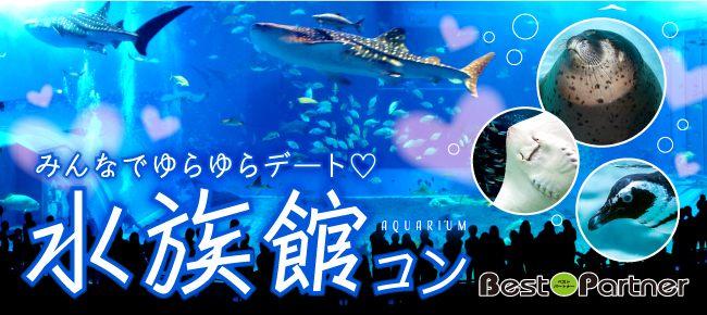 【東京】9/30(日)水族館コンinアクアパーク品川@趣味コン/趣味活 夜の水族館でグループデート♪駅2分☆アクセス抜群《25~35歳限定》