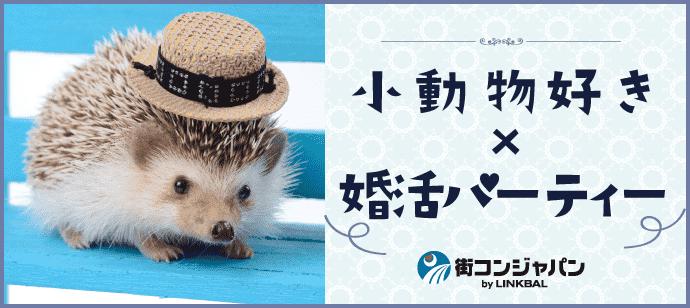 【小動物好き限定★料理付】婚活パーティーin大阪