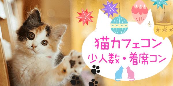 10月28日(日)大阪大人の猫カフェパーティー 猫と触れ合いたい&大好きな人集うパーティー♪