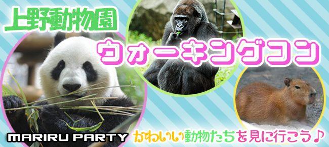 9月23日(日)【女性20代限定企画】☆上野動物園で開催☆ 動物たちに癒される!!上野動物園ウォーキングコン!