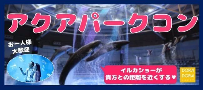 【東京都品川の体験コン・アクティビティー】ドラドラ主催 2018年9月20日