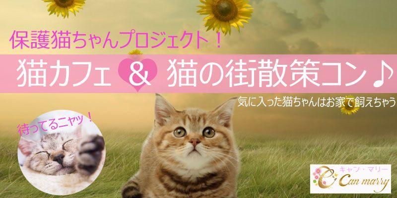 【10/27(土)】ネコの街散策・保護ネコちゃん救済プロジェクト♡猫カフェと猫雑貨散策コン♪【高円寺】